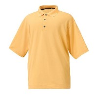 FootJoy ProDry Pique Shirts (Previous Season Apparel Style)【ゴルフ ゴルフウェア>ポロ/長袖シャツ】
