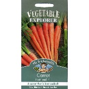 Mr.Fothergill's Seeds VEGETABLE EXPLORERCarrot Nutri-red F1キャロット・ヌトリ・レッド・F1の種