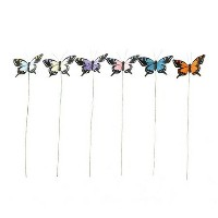 SPICE/FEATHER BUTTERFLY PICK COLOR 6pSET/XTGG5019【04】[4SET]《花 資材 ピック 動物・バタフライピック》