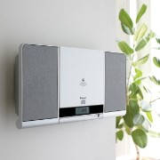Wall mount CD System