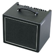 CHEEKY D.12V【税込】 AER 200W ギターアンプ Two channel electric guitar amplifier [CHEEKYD12V]【返品種別A】【送料無料】【RCP】