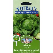 Mr.Fothergill's SeedsNaturally Disease Tolerant CollectionLettuce Stylistレタス・スタイリストの種