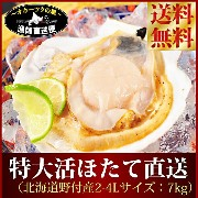 ホタテ ほたて 『特大活ホタテ貝直送便:7キロ詰め★北海道野付産天然貝』 送料無料 帆立 (2L〜4Lサイズ平均20...