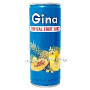 GINA TROPICAL FRUI DRINK トロピカルドリンク 240ml